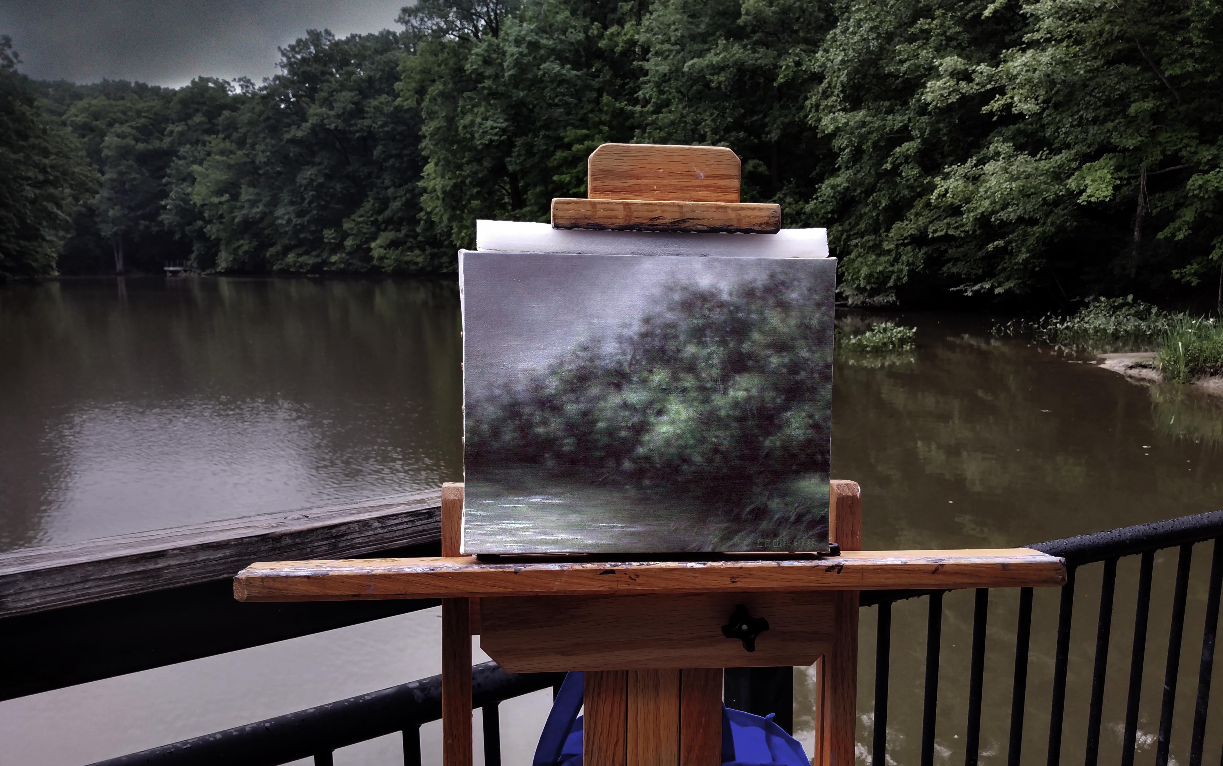 Misty Rain Over Carpenter Lake_On Site